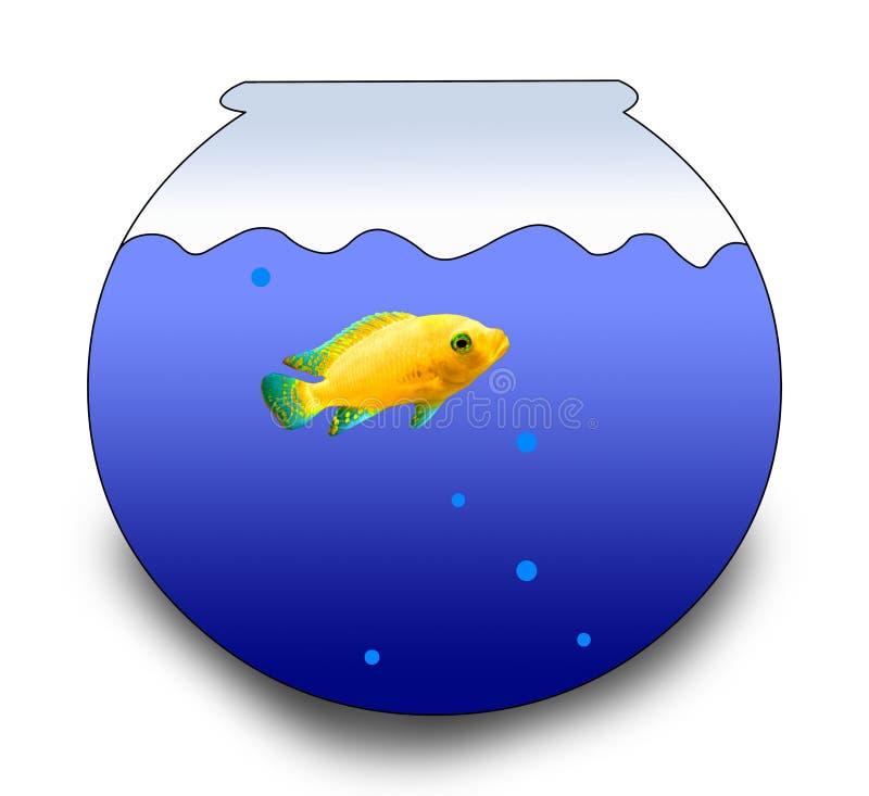 Fishbowl y un pescado stock de ilustración