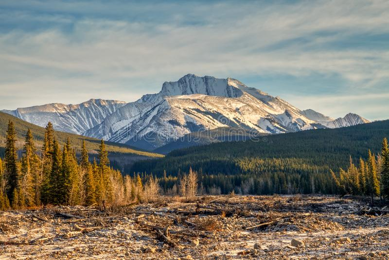 Fisher Osiąga szczyt, góra w Kananaskis w Kanadyjskich Skalistych górach, Alberta obraz royalty free