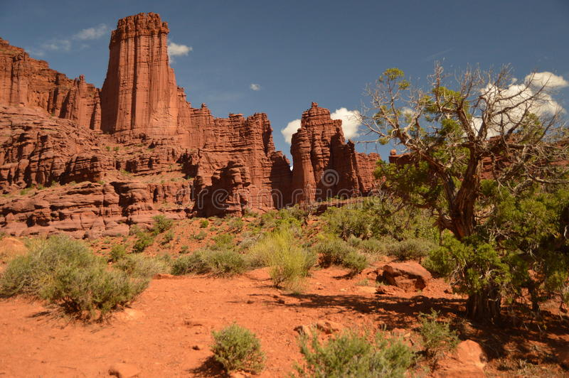 Fisher Towers stock foto's