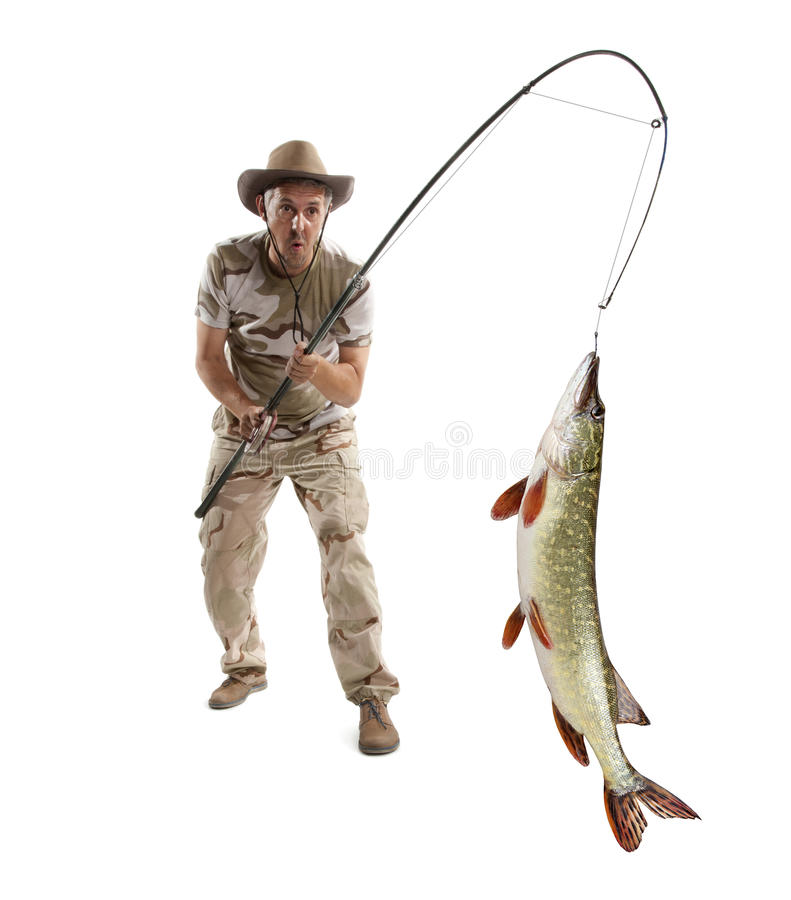 Fisherman with big fish - Pike. (Esox Lucius) isolated on white stock image