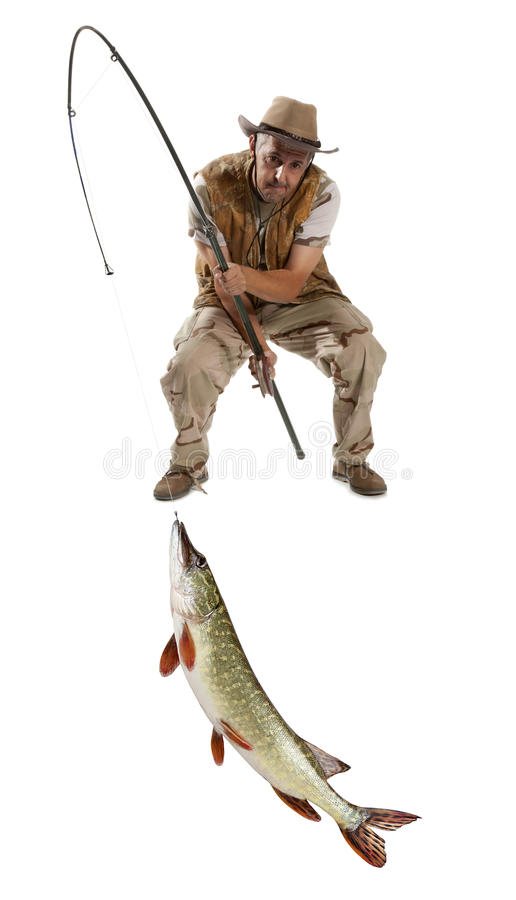 Fisherman with big fish - Pike. (Esox Lucius) isolated on white royalty free stock images