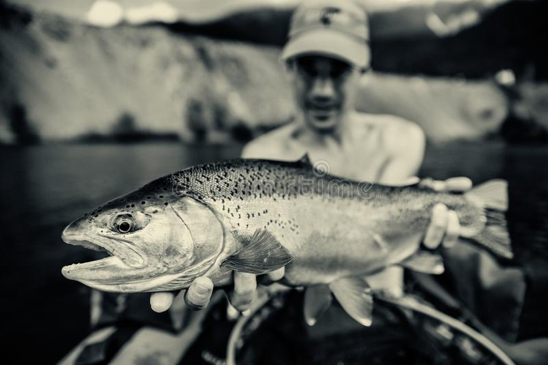 Fisherman with catch of Rainbow trout, Slovenia. Black and white photo of fisherman holding the catch of Rainbow trout Oncorhynchus mykiss on bellyboat, Jesenice royalty free stock photos