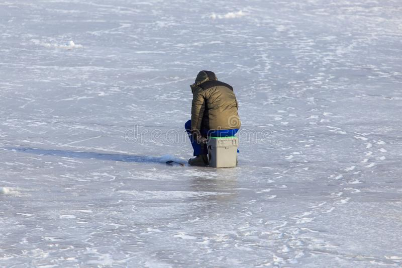Fisherman catches fish on ice in winter stock images