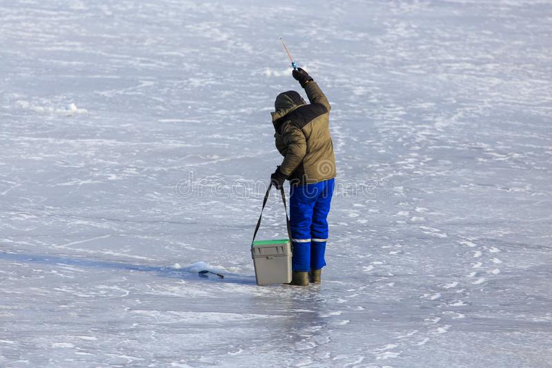 Fisherman catches fish on ice in winter royalty free stock image