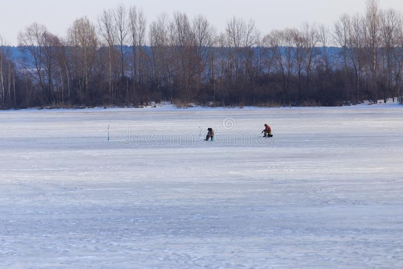 Fisherman catches fish on ice in winter stock photo
