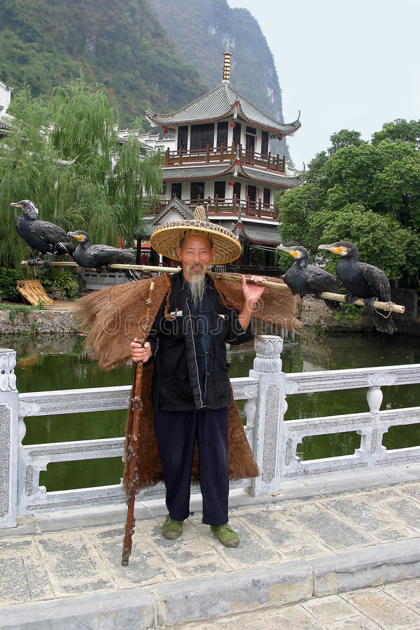 Fisherman with cormorants royalty free stock images