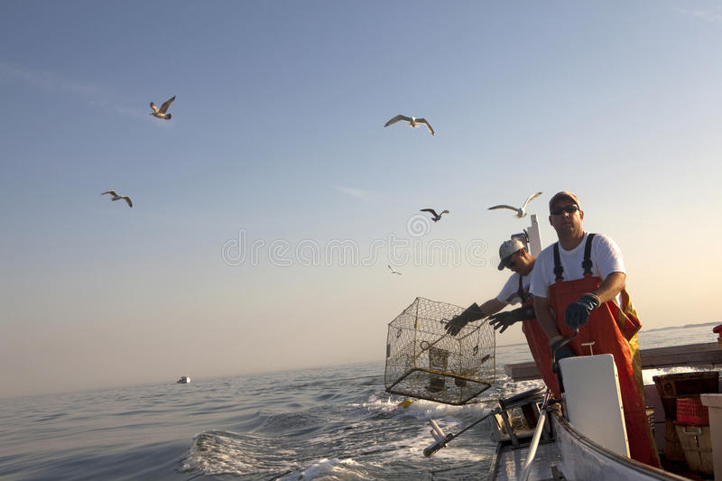 Fisherman dropping the crab baskets in the sea stock photography
