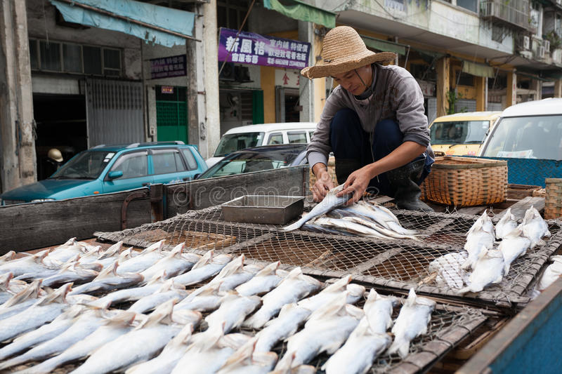 Fisherman prepares fish for drying in the fishing port in Macau stock photography