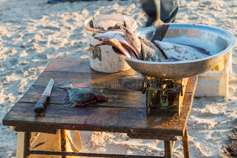 Fisherman selling fish straight from boat after morning catch.  stock image