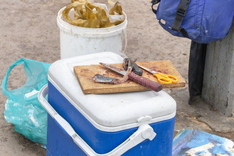 Fishermans przekładnia fotografia royalty free
