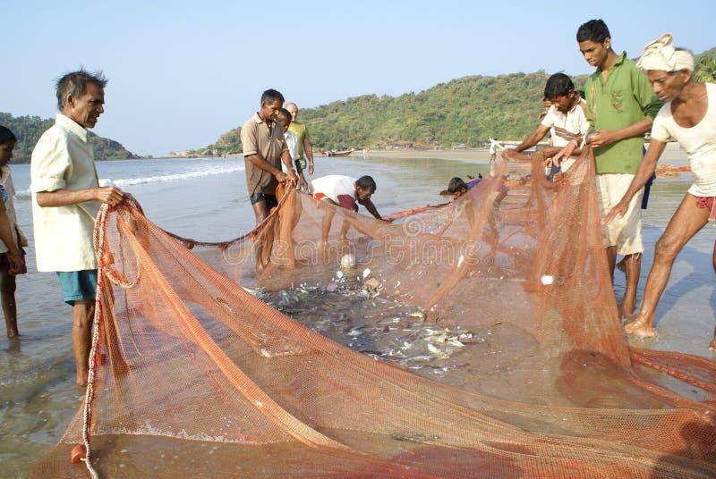 Fishermen drafting fishing net. Indian fishermen gather fish on a fishing net after haul stock photo