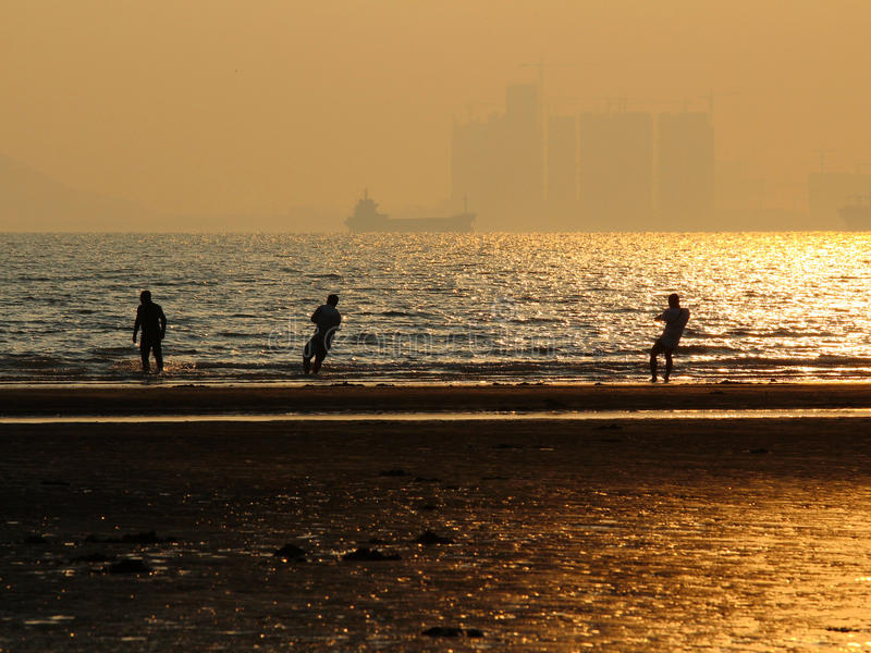 The fishermen hade a good haul on the beach. Qingdao, China, sunset, the fishermen hade a good haul on the beach royalty free stock image
