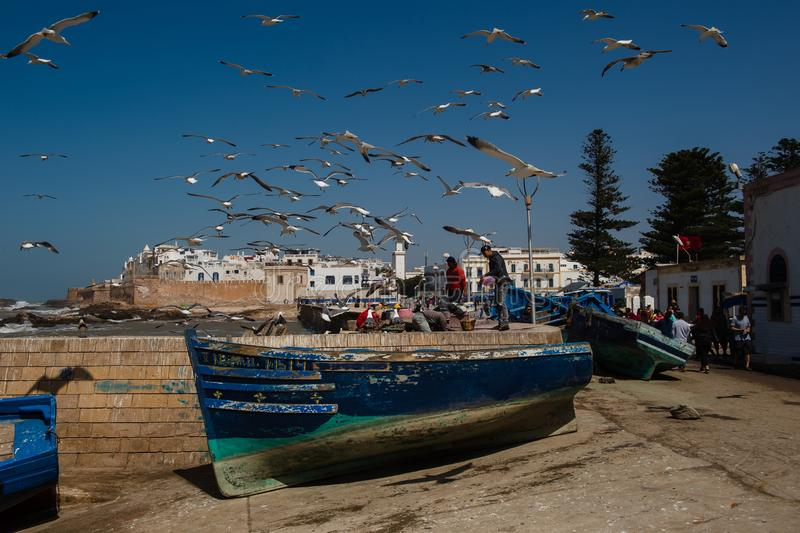 Fishermen and seagulls stock images