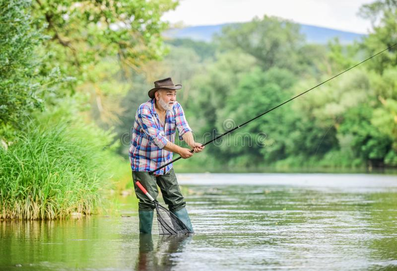 Fishers have long rods. retired bearded fisher. Trout bait. fisherman with fishing rod. mature man fly fishing. man royalty free stock images