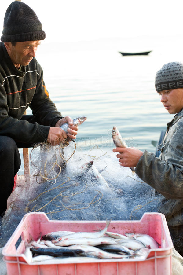 Download Fishers Take Fish Out Of Net Editorial Stock Photo - Image of baikal, morning: 18453648