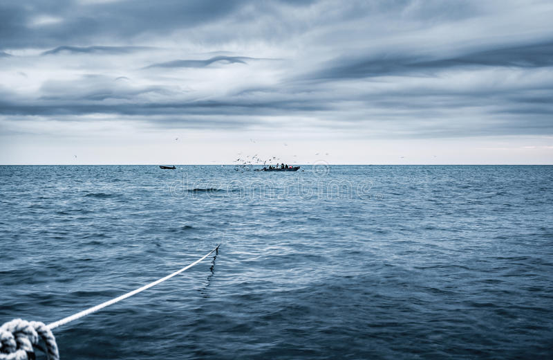 Download Fishery stock photo. Image of inshore, sling, ocean, catch - 83703460