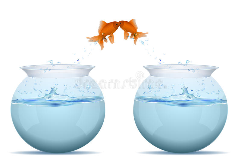 Fishes jumping from tank vector illustration