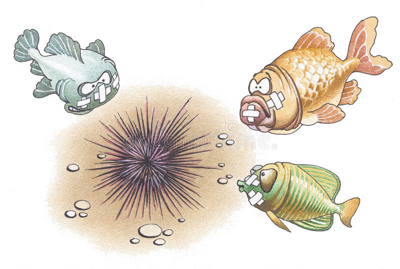 Fishes and a sea-urchin stock illustration