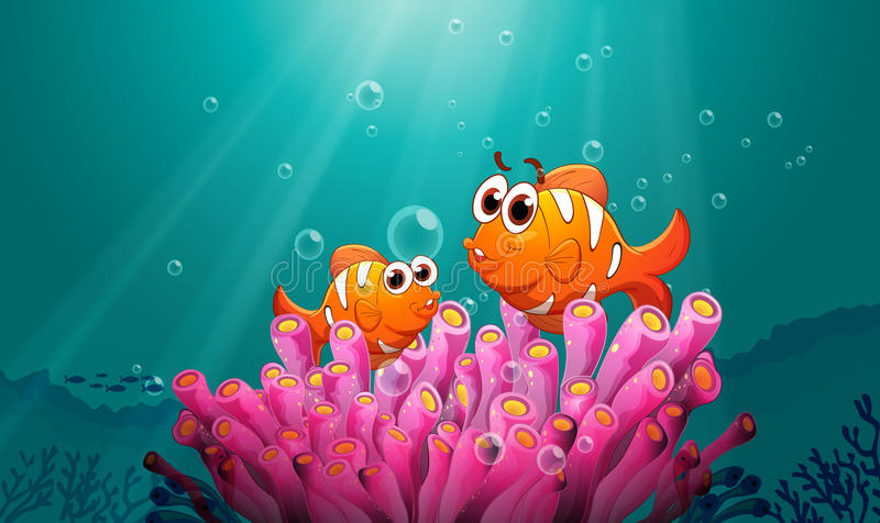 Fishes in water vector illustration