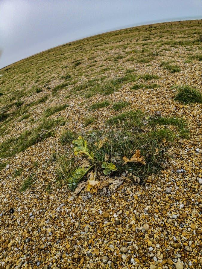 Fisheye widok Dungeness - wielki teren gont w świacie fotografia royalty free