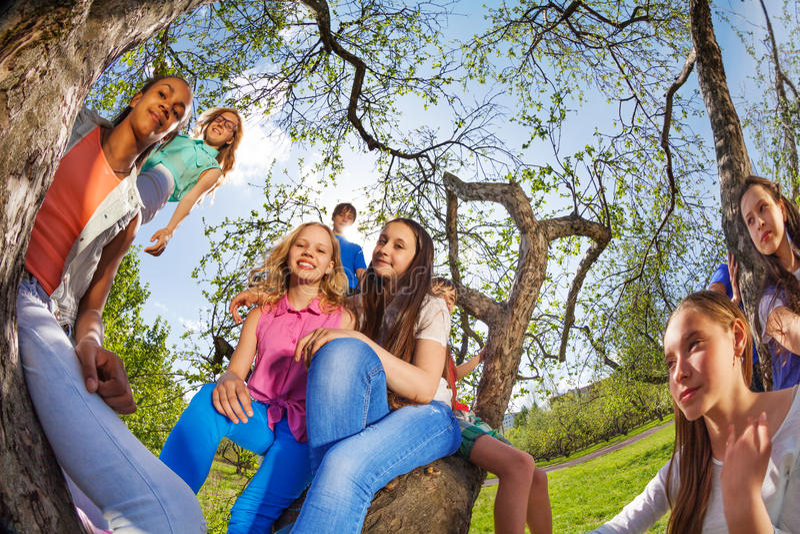 Fisheyemening van gelukkige tieners die op boom zitten royalty-vrije stock foto