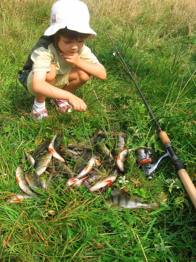 Download Fishing stock photo. Image of basses, plastic, grass, baits - 1057834