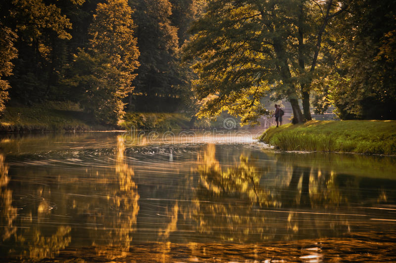 Download Fishing stock image. Image of white, leaves, autumn, catch - 26547727