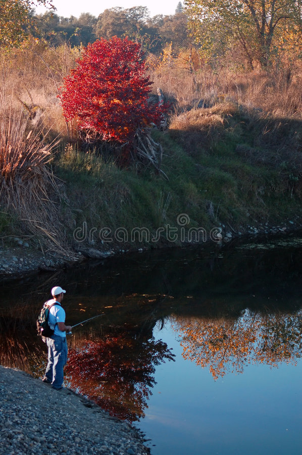 Download Fishing Stock Photo - Image: 510430