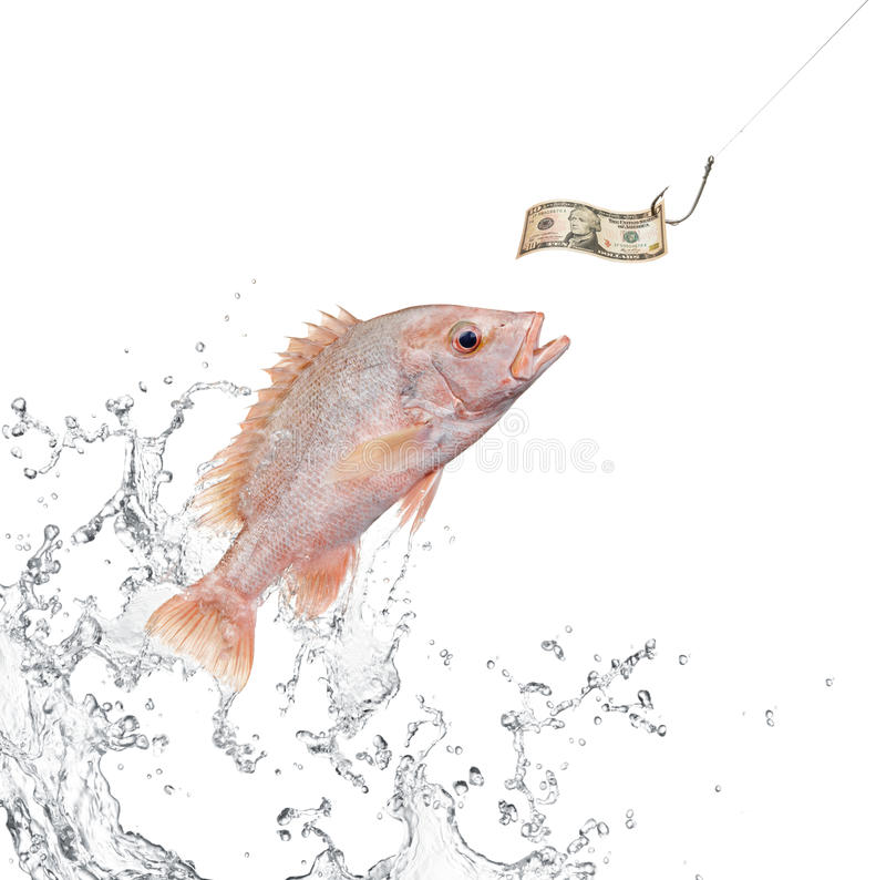 Fishing bait stock images