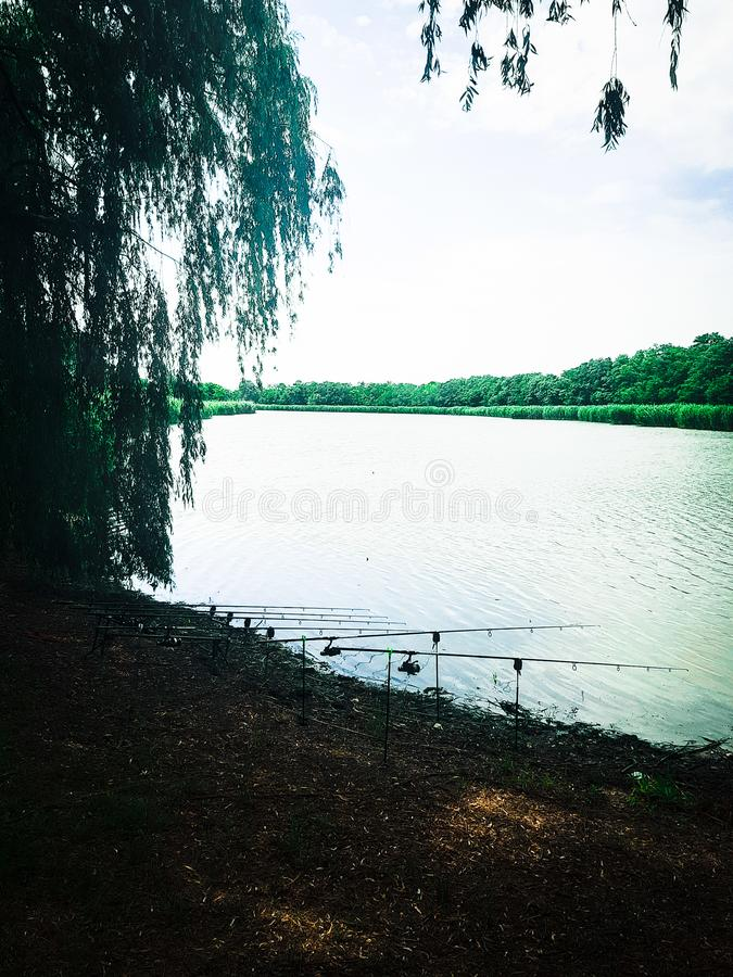 fishing on the banks of the river rods stock photos