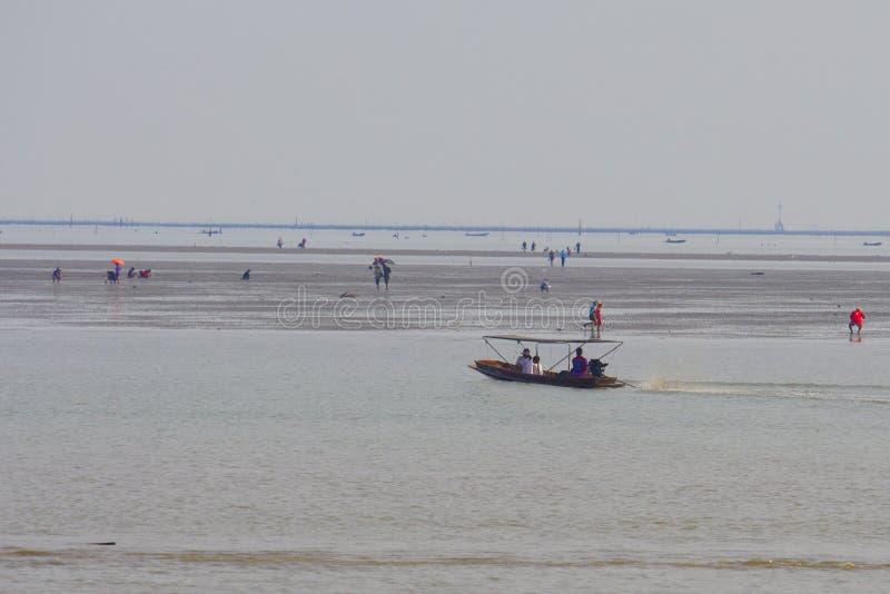 Fishing boat at Don Hoi Lam, Thailand royalty free stock photography