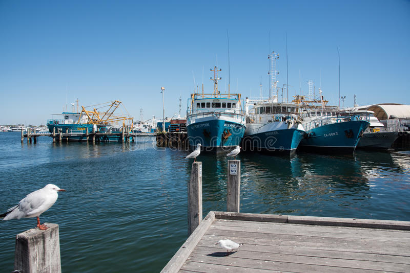 Fishing Boat Harbour and Marina royalty free stock photos