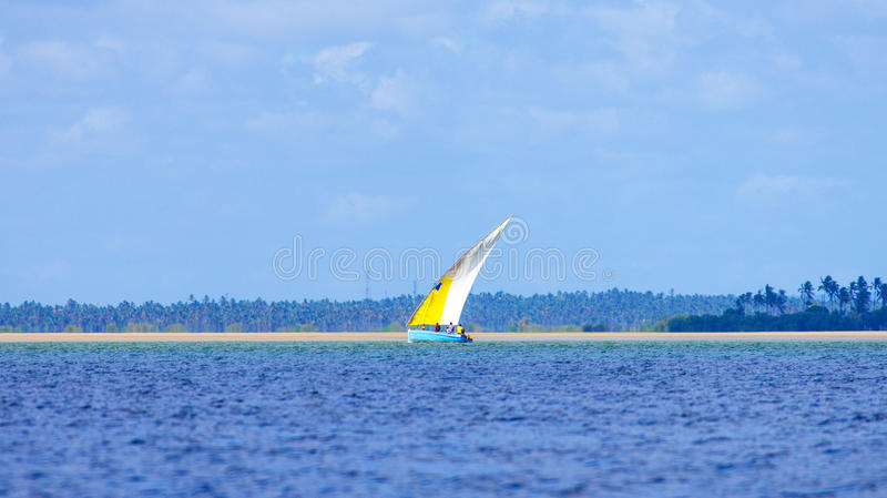 Fishing boat and palm trees stock photography