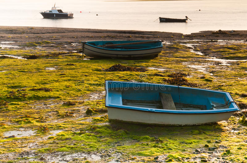 Boats during low tide at sunset.   Hood Group