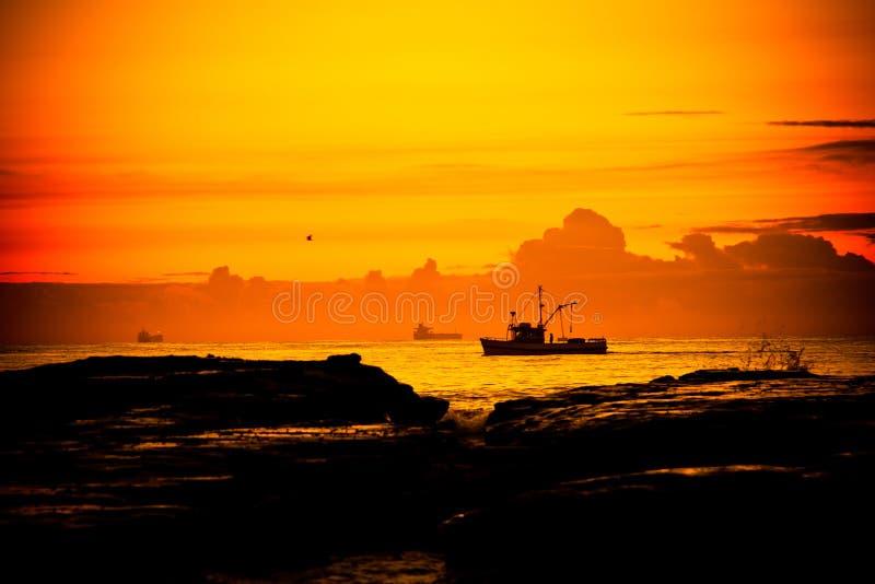 Download Fishing boat, Wollongong stock photo. Image of dawn, harmony - 19496764