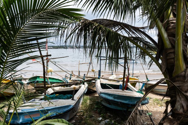 Fishing boats on the beach near palm trees.  royalty free stock images