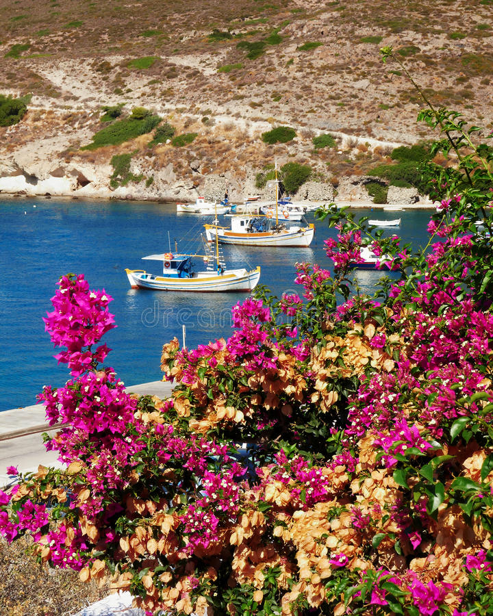 Download Fishing Boats And Bougainvillea Stock Photo - Image of fishing, island: 21735264