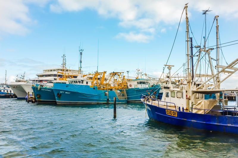 Fishing boats docked. royalty free stock photography