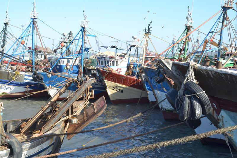 Fishing boats in the harbor of Essaouira royalty free stock photo