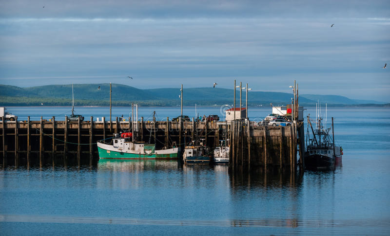 Fishing boats in the harbour at low tide in Digby, Nova Scotia. stock photography