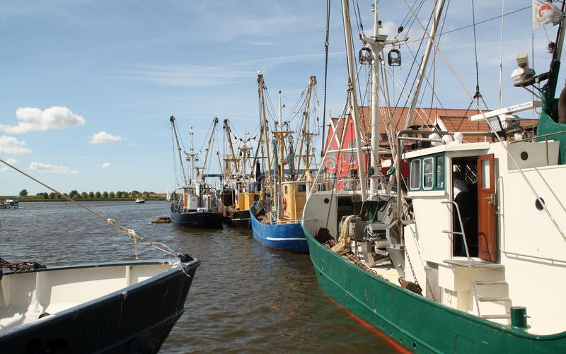 Fishing boats in the harbour royalty free stock photo