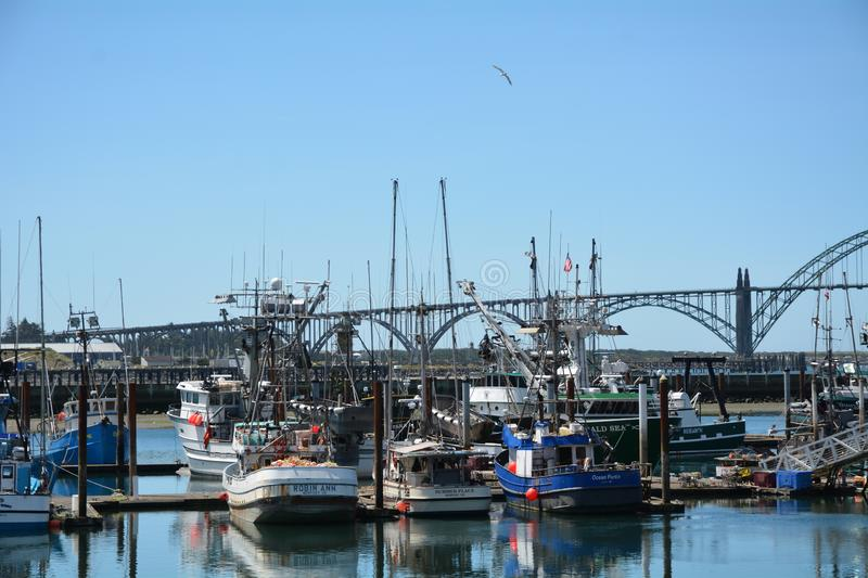 Fishing boats tied up at the dock in Newport, Oregon. These are some fishing boats tied up at the dock in Newport, Oregon`s Yaquina Bay stock image