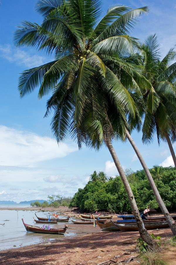 Free Fishing Boats Under Palmtrees Royalty Free Stock Images - 25030769
