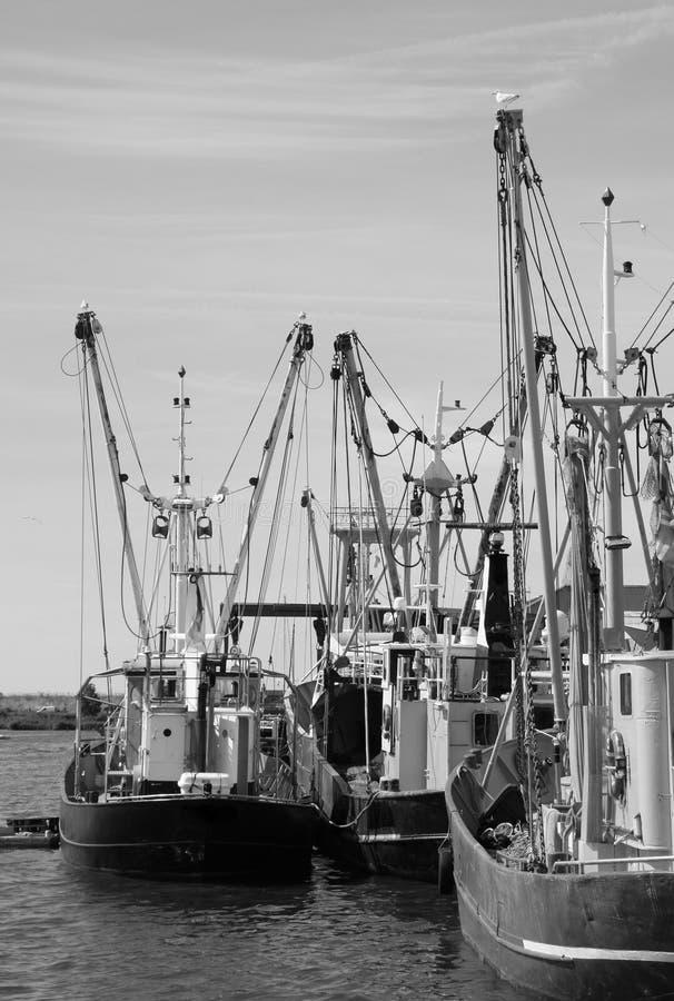 Fishing boats. Zoutkamp stock image