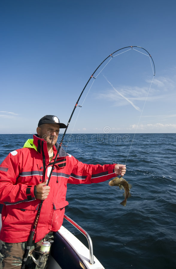 Fishing for cods stock images