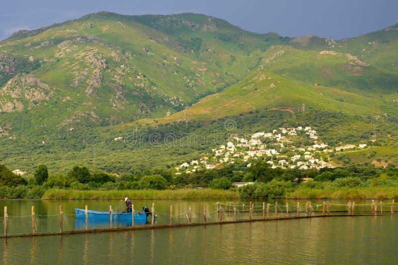 Fishing in corsica stock photos