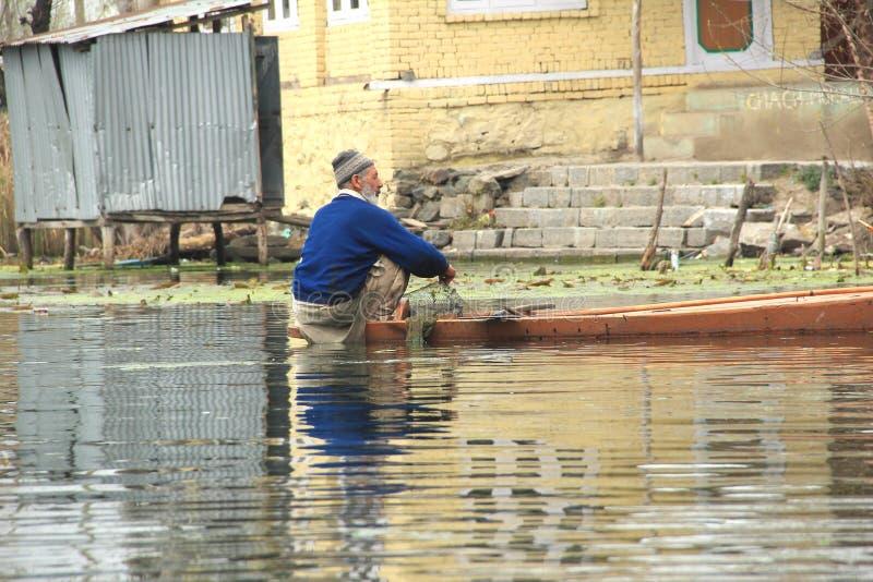 Fishing in dal lake. royalty free stock photography