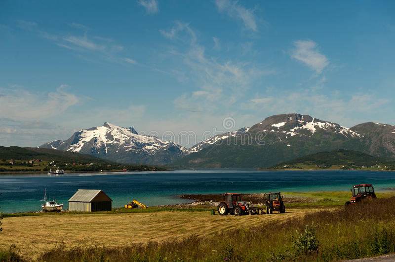 Download Fishing And Farming In Lofoten Stock Images - Image: 22482924