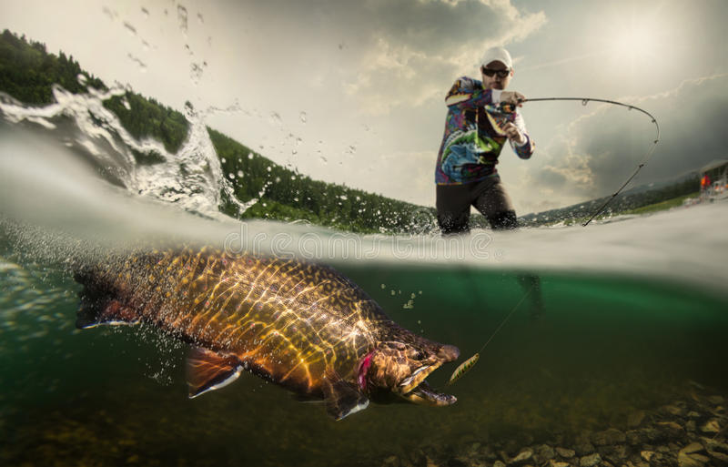 Fishing. Fisherman and trout. Underwater view