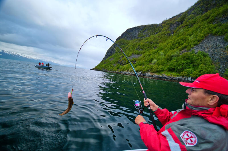 Fishing in fjord stock photography